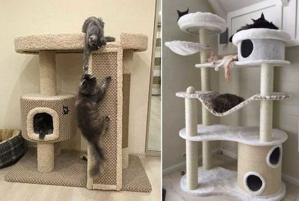 Domik Dla Koshki 16 600x404 Jpg 600 404 Piksel Cat House Diy Cat Furniture Cat House