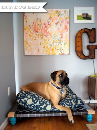 This heavy-duty dog bed holds up to the challenge of a 160-pound American Mastiff. Woven nylon strapping is stapled to a square wooden frame and finished with upholstery tacks for a finished look. Colorful turned furniture legs give the bed a fun vibe. Get the tutorial at Wouldn't It Be Lovely.   - CountryLiving.com
