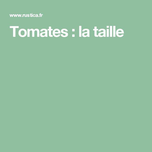 Tomates : la taille