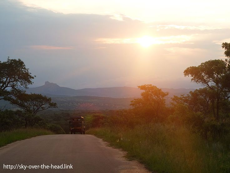 クルーガー国立公園(南アフリカ)/Kruger National Park(South Africa) – みんなのそら@86回 ピースボート 世界一周の旅
