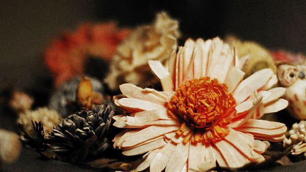 Come raccogliere e conservare i fiori per il pot-pourri
