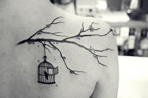 29 best images about take flight break free on pinterest for Best way to take care of a new tattoo