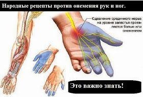 Ваш личный врач.: Народные рецепты против онемения рук и ног. Это важно знать!