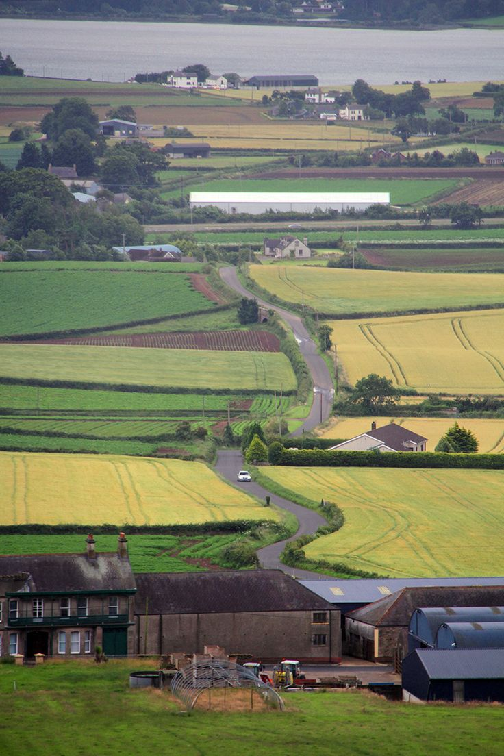 View from Scrabo Tower