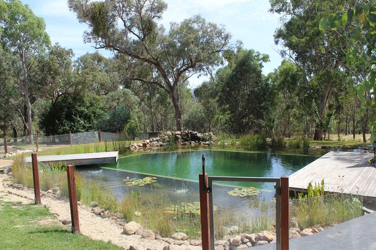 Our projects natural swimming pools australia swimming ponds pinterest swimming pools for Natural swimming pool australia