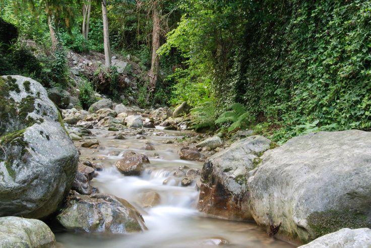 Alpejski potok