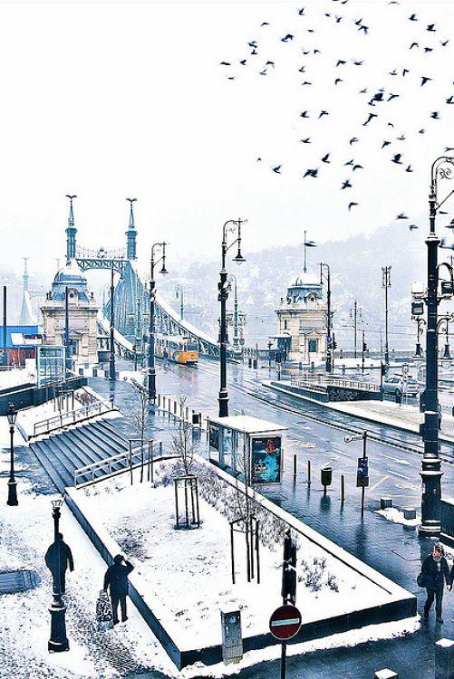 The Liberty Bridge (#Szabadság híd) in #Budapest, #Hungary on a #snowy day.