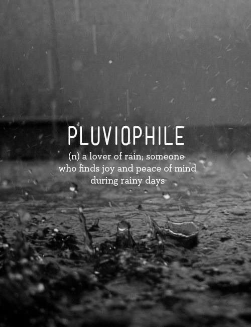 ☂ Pluviophile (n) a lover of rain; someone who finds joy and peace of mind during rainy days