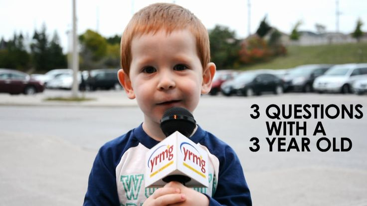 Top 5 viral federal election stories