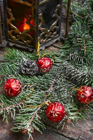 wild nuts and Christmas light -  Royalty Free Stock Photo - 19406944