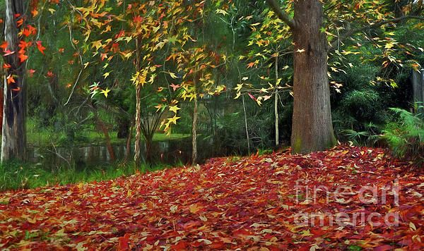 #Autumn #Colors by #Kaye_Menner #Photography Quality Prints Cards products at: https://kaye-menner.pixels.com/featured/autumn-colors-kaye-menner.html