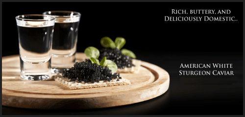 American White Sturgeon Caviar and Gourmet Food Online at Black Star Gourmet