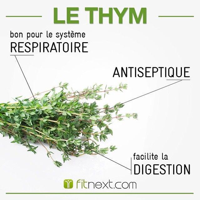 Cette plante aromatique très odorante est un vrai trésor de santé ! On vous recommande de consommer le thym dans sa version fraîche plutôt que séchée, pour profiter un maximum de ses bienfaits.