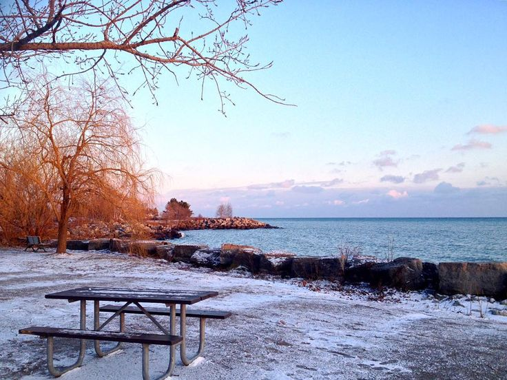how to get to the top of scarborough bluffs