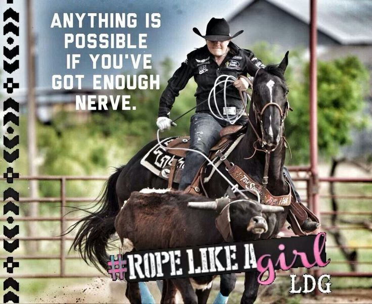 89 Best Images About Horse Quotes And Sayings On Pinterest