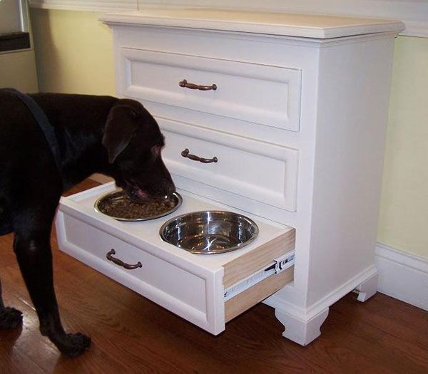 Turn a low drawer into a pet-feeding hutch.   36 Genius Ways To Hide The Eyesores In Your Home
