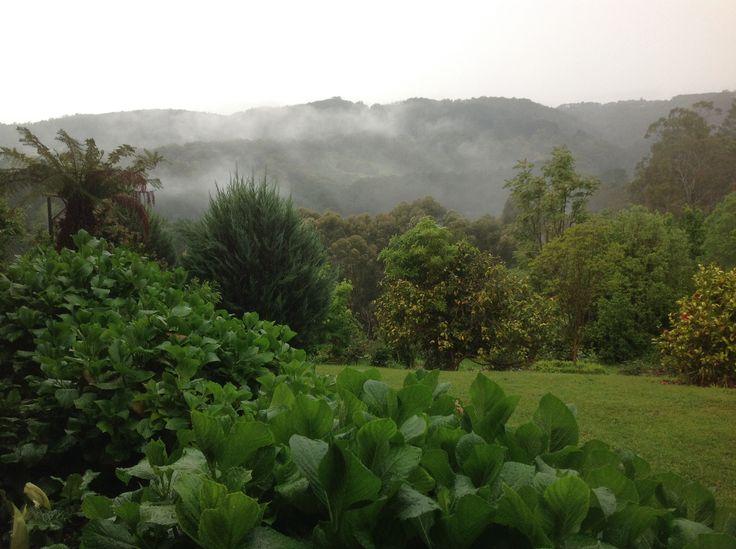 Fog in Basket Range. Taken from Amburwood.