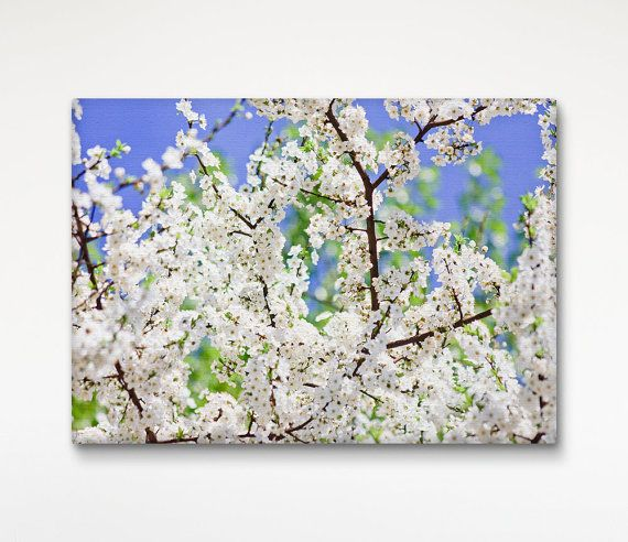 Almond Blossom Canvas Print, Floral Wall Decor, White Flowers, Wall Decoration