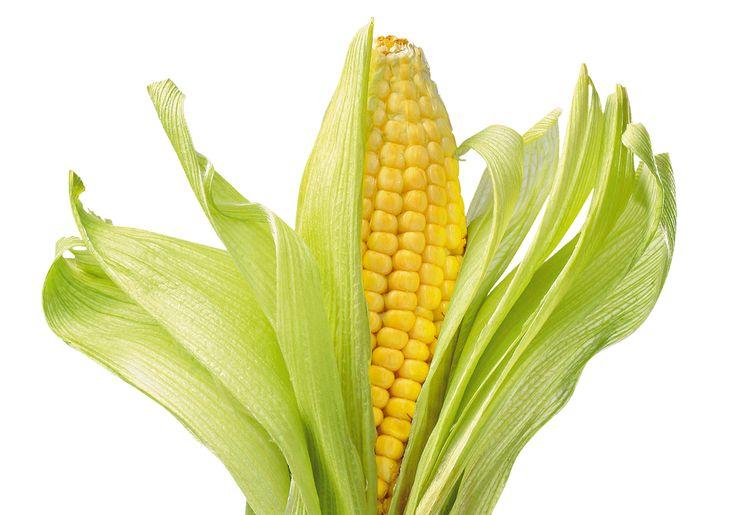Conheça os benefícios do milho