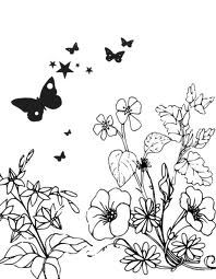 outline flowers pictures Google