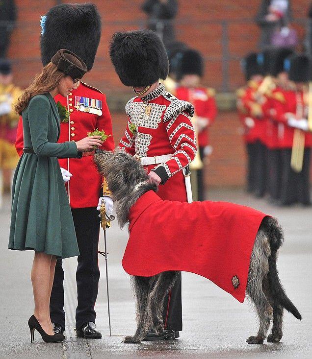 The princess and the dog. English Royalty