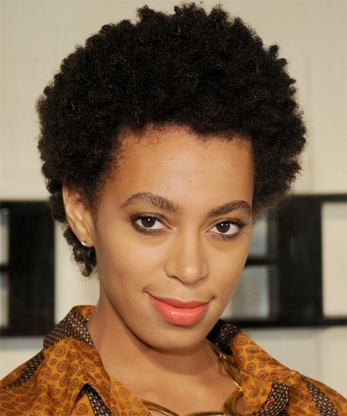 Women Afro Hairstyles New Short Hair Natural Afros