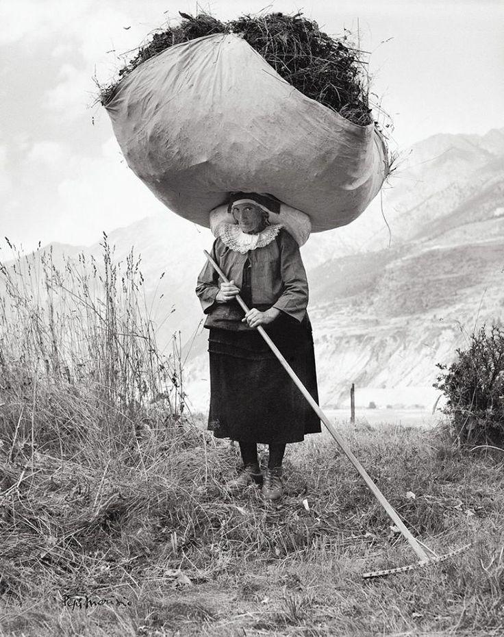 Haying in Cogne, 1959 Pepi Merisio
