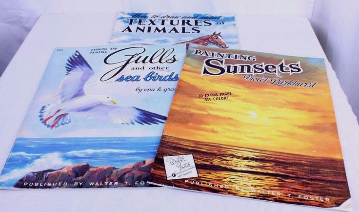 Lot of 3 VTG Walter Foster Art Instruction Books Animals Sunsets Gulls Sea Birds