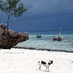 *Ras Nungwi Beach Hotel