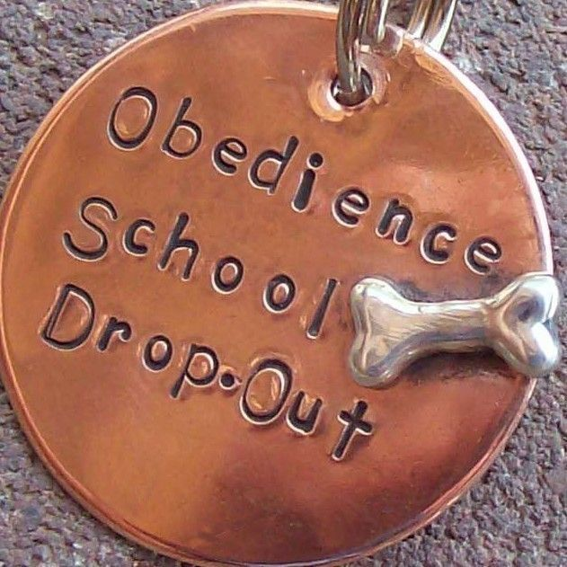 For Moo - Obedience School Drop-Out  Handmade Pet Tag. $16.00, via Etsy.