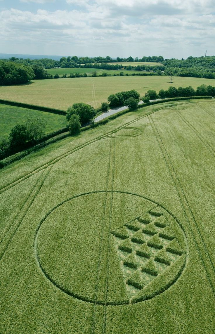 Intriguing aerial pictures revealing crop circles in fields in Merstham and the surrounding areas have been captured by enthusiasts.Steve and Karen Alexander have been photographing crop circles for the past 20 years. Their website, Temporary Temples [ http://temporarytemples.co.uk/ ], documents what they capture from a helicopter flying over fields of barley wheat or rapeseed.
