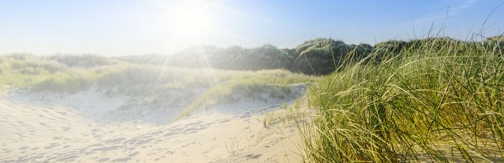 Op een steenworp van Diest kussen de groene heuvels van het Hageland de uiterste takken van de Zuiderkempen. Hier tjirpt de veldkrekel zijn eigen zwoele zomerhit en torent een geheimzinnige heuvel uit boven een vallei van drie beken.