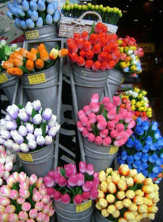 #Amsterdam, Flower Market. Tulips