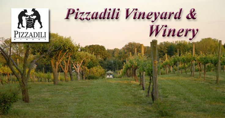 Welcome to Pizzadili Winery!
