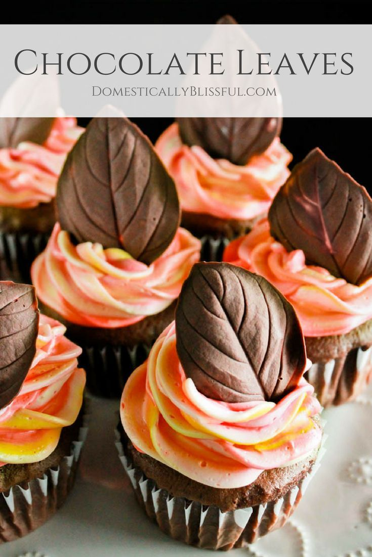 Chocolate Leaves are a fun & a delicious way to top your festive fall cakes & cu…