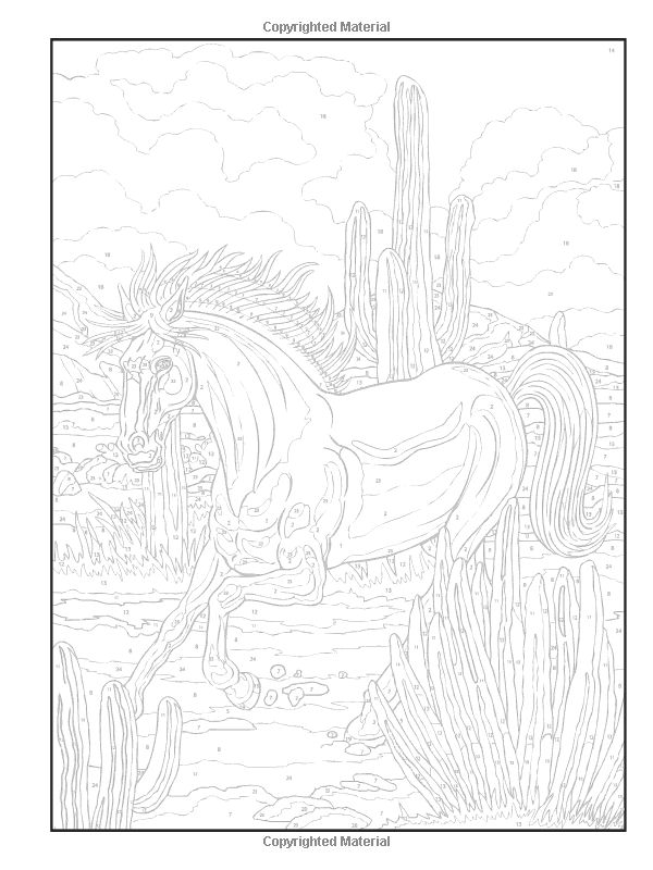 1000 Images About Dover Horse Colouring Pages On