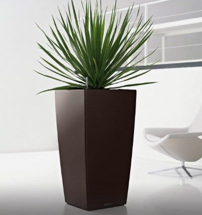 Decorate your home or office with Plantercraft's indoor plant pots and containers, and funky designer furniture. Enquire today!  http://www.plantercraft.com.au  #designer_furniture_perth #LED furniture_perth #recycling_bins