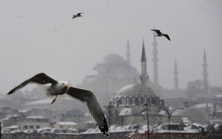 Snowy İstanbul