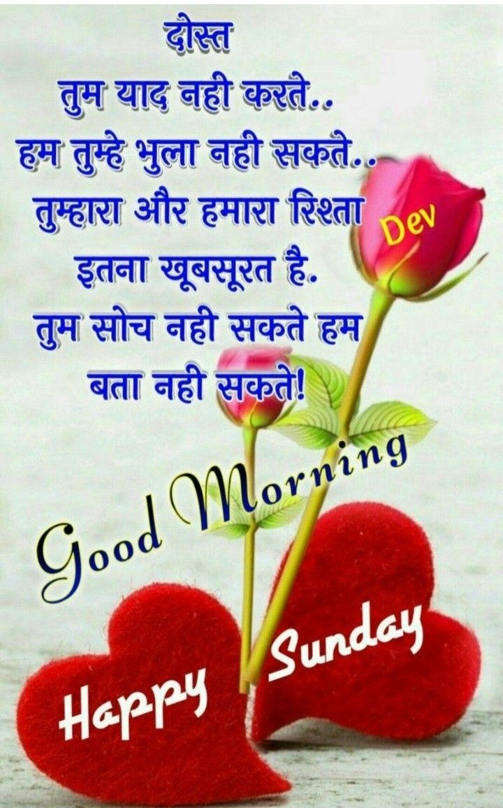 Bhupesh Nature Images Morning Images Good Afternoon Good