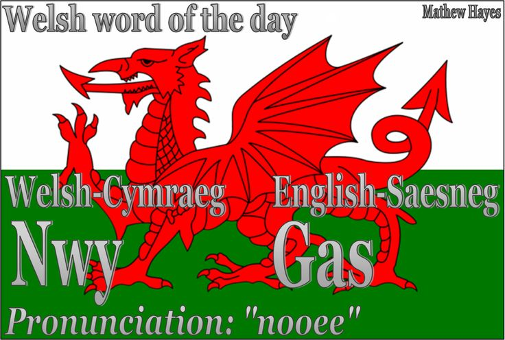 Welsh word of the day: Nwy/Gas