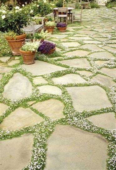 Having an easy to maintenance yard is the goal of many people. You can get easy to manage front yard done by our professional landscape designers. You can have a front yard landscaping done that will…MoreMore #LandscapingIdeas