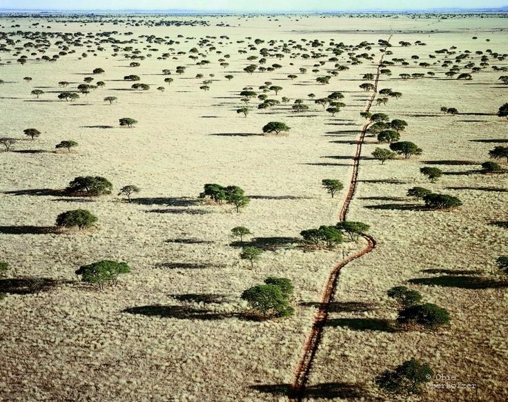 #Obie Oberholzer - Farm track, Kimberley, South Africa