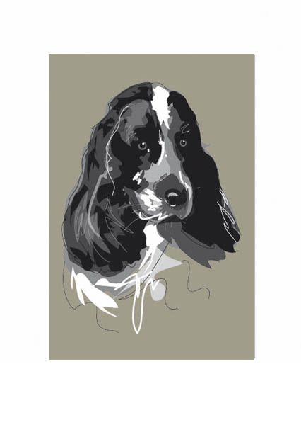 Spaniel black and white