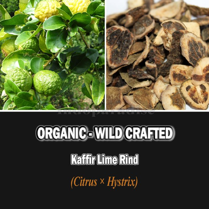 The rind of the fruit is used in many digestive tonics and blood purifiers. #kaffirlimerind #citrushystrix #driedherbs #herbalremedies #culinary