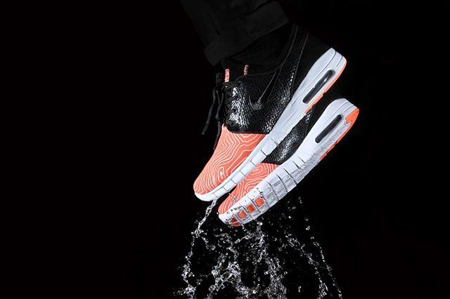 купить кроссовки Nike SB Fish Ladder Collection в интернет магазине скидка