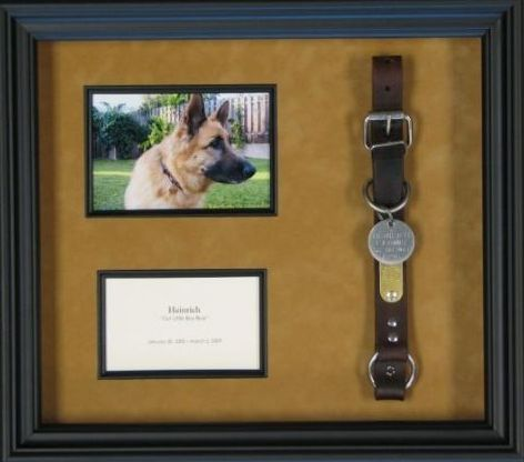 paw print + picture in the shadow shadow box for that day when you have to part ways