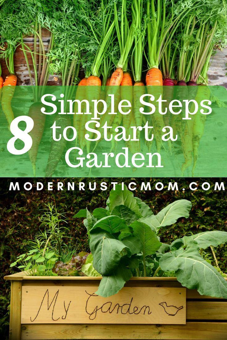 8 Simple Steps To Start A Garden Starting A Garden Gardening For Beginners Growing Vegetables