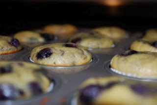 Paleo Lemon Blueberry Muffins (made them and they were amazing!)Lemonblueberri Muffins, Diet Food, Weekend Cooking, Dairy Free, Coconut Oil, Lemon Blueberries Muffins, Coconut Flour, Paleo Recipe, Baking Soda