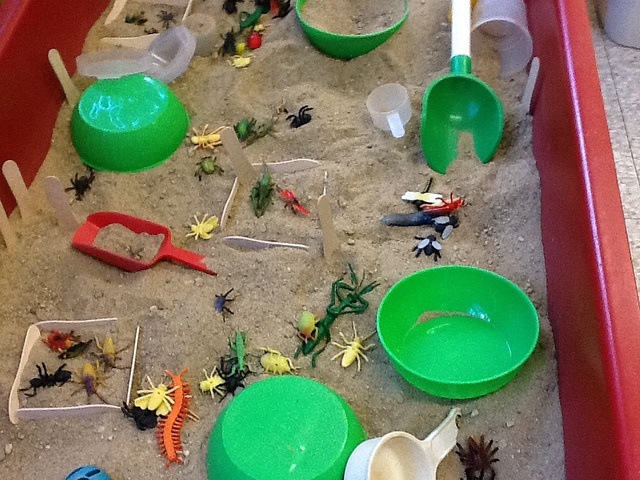 "Sand, lolly sticks & minibeasts ("",)"