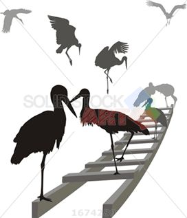 Vector black and grey stork silhouettes on ladder on white vertical